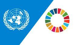 Iniciativas da Recode são destaque na ONU, em NY