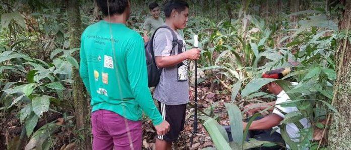 Documentário em 360º produzido pela etnia Wajãpi fala sobre natureza e criação